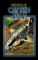 Catfish Atlas. Volume 1