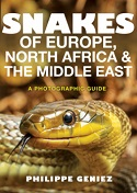 Snakes of Europe, North Africa