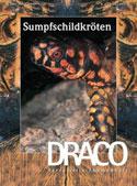 Draco Nr. 13