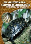 Die Gelbwangenschmuckschildkröte Trachemys scripta scripta