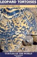 Leopard Tortoises. The Natural History, Captice care and Breeding of Stigmochelys pardalis
