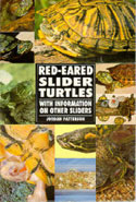 Red-Eared Slider Turtles With Information on Other Sliders