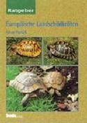 Europäische Landschildkröten