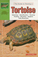 Tortoises. Natural History, Care and Breeding in Captivity